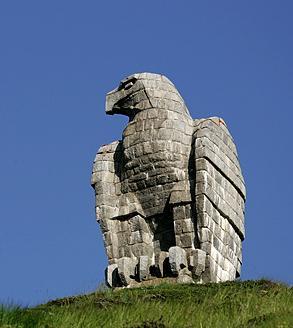 Adler auf dem Simplon-Pass