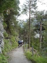 Viele fahrbare Waldwege